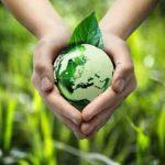 Erde, grün, mit Blatt in Händen gehalten über Rasen
